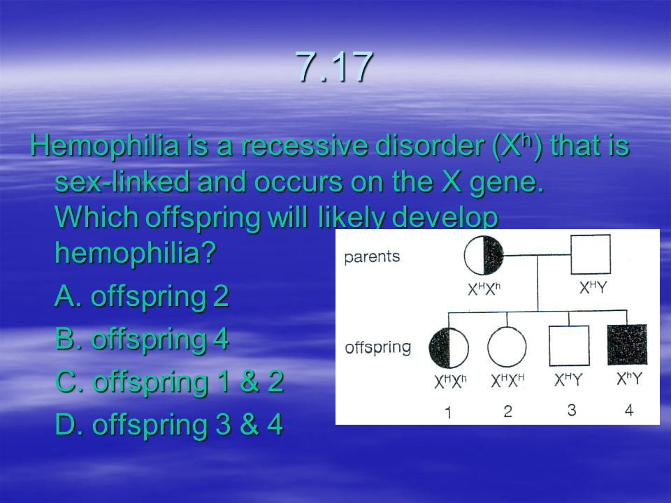 7.17 Hemophilia is a recessive disorder (Xh) that is sex-linked and occurs on the X gene. Which offspring will likely develop hemophilia