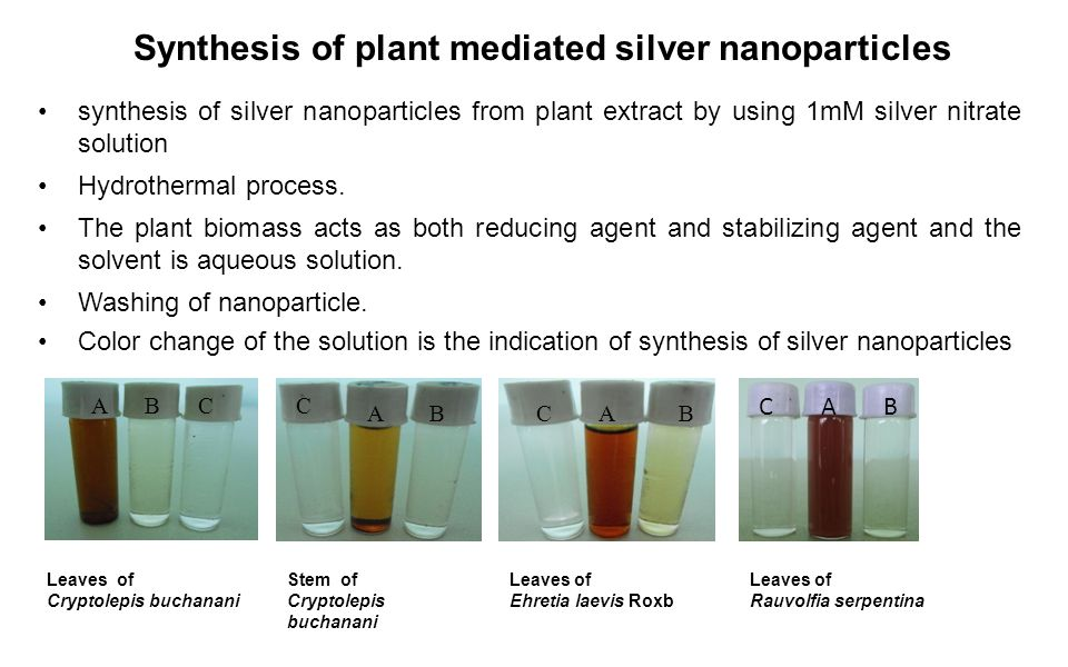 Synthesis of silver nanoparticles: chemical, physical and biological methods