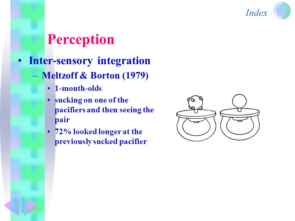Meltzoff and moore study
