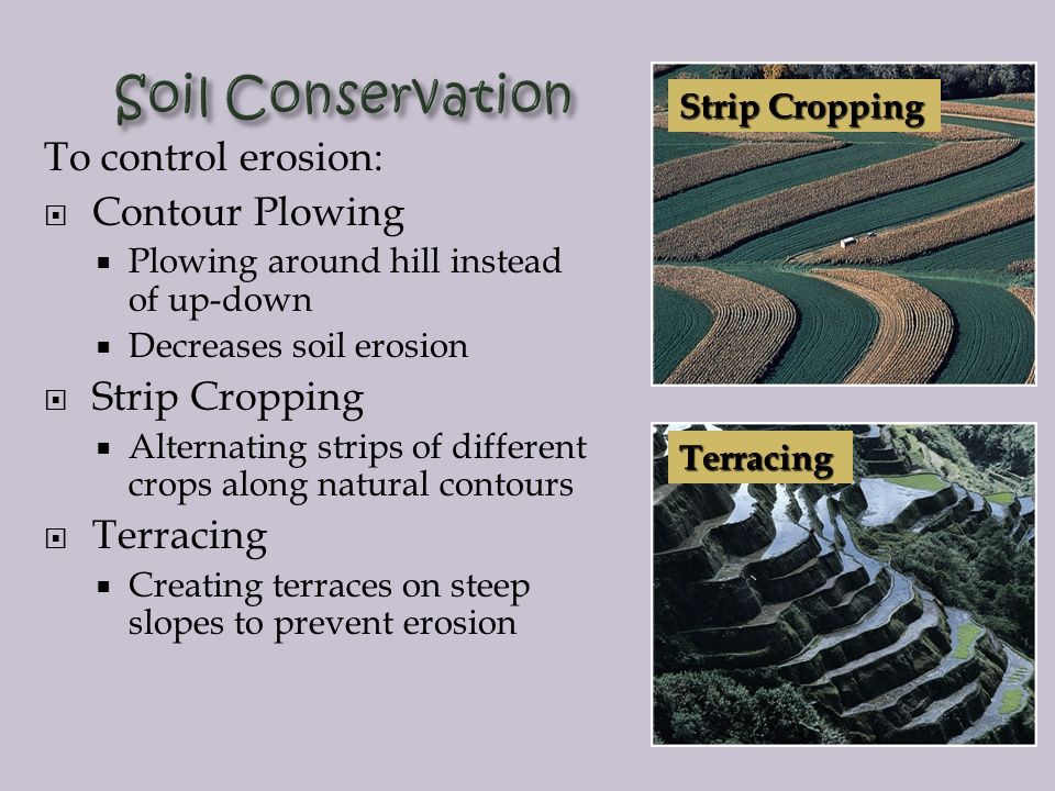 soil conservation essay what is the meaning of soil and water conservation the best soil the best soil