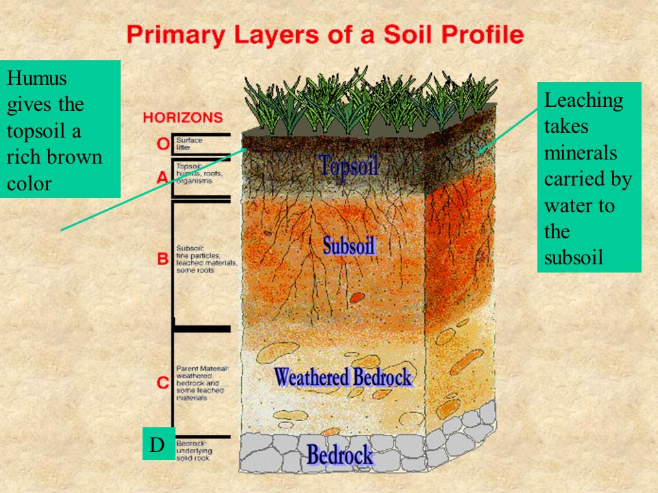Soil much more than dirt ppt video online download for Mineral soil vs organic soil