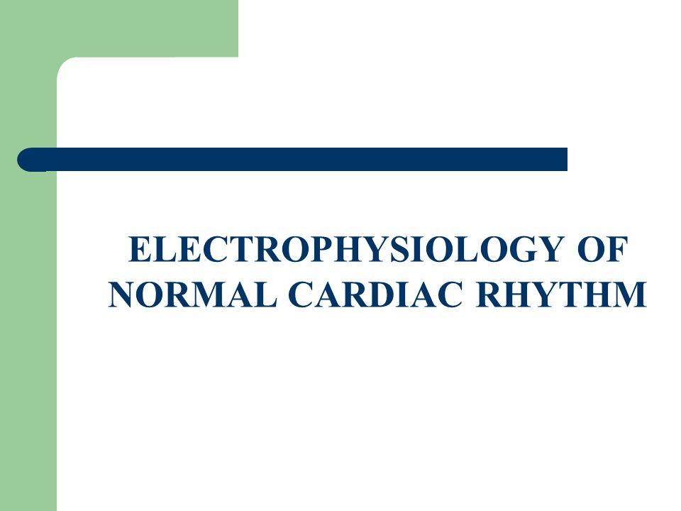 ELECTROPHYSIOLOGY OF NORMAL CARDIAC RHYTHM