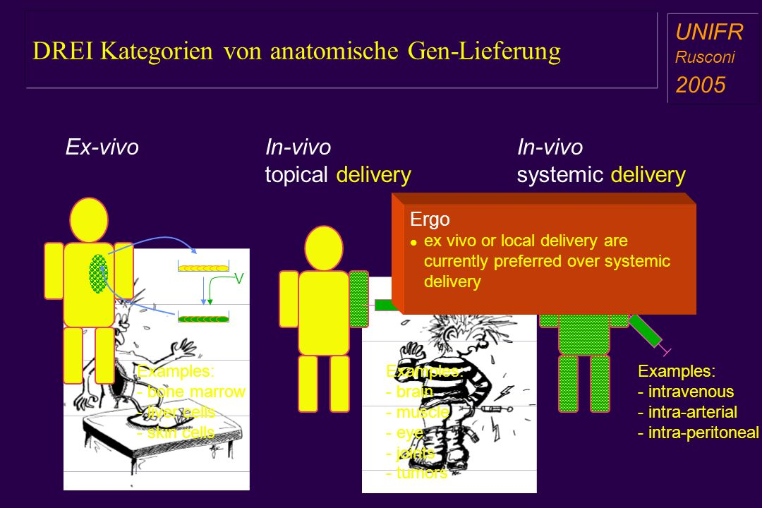 DREI Kategorien von anatomische Gen-Lieferung