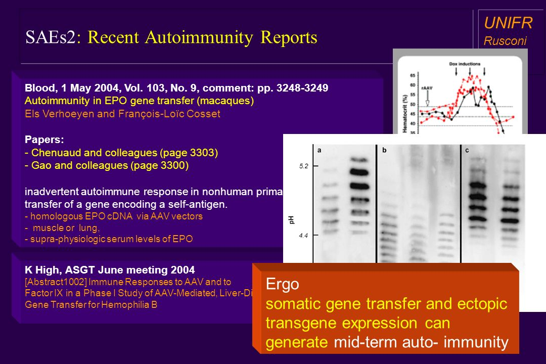 SAEs2: Recent Autoimmunity Reports