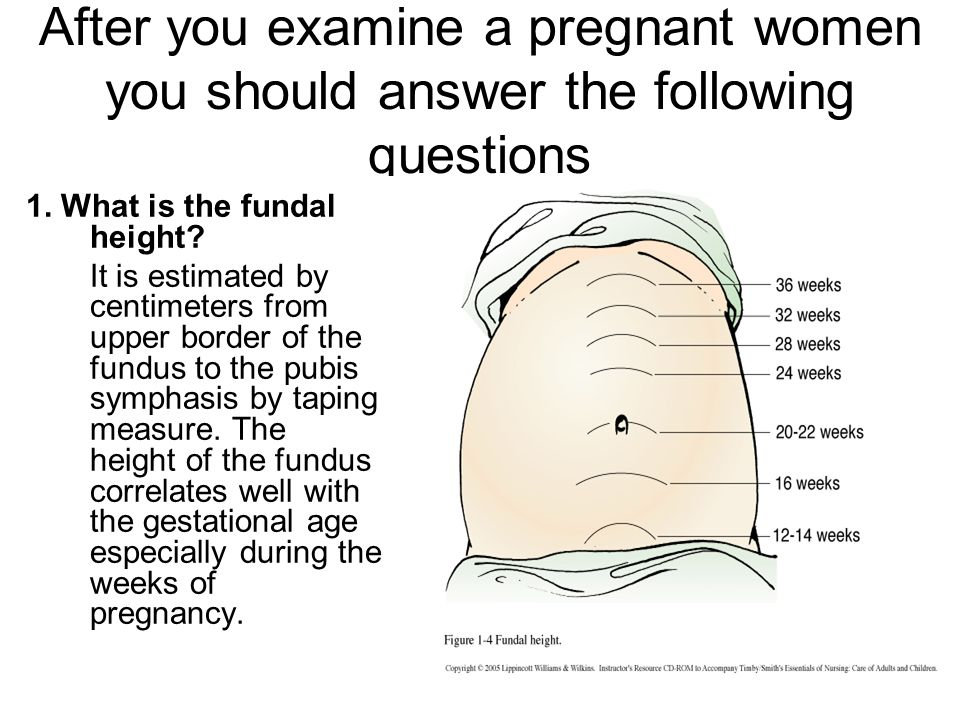 dating pregnancy by fundal height Evidence based clinical practice guideline third trimesters of pregnancy fundal height uses singleton pregnancy and a dating ultrasound.