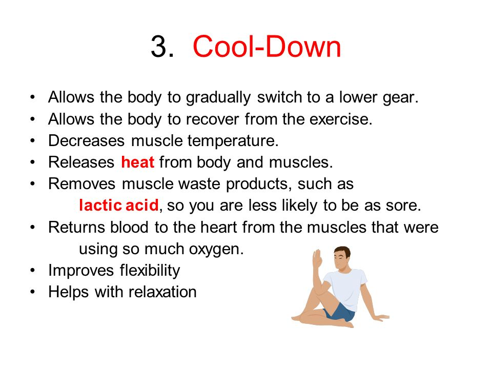 The Exercise Routine/Workout