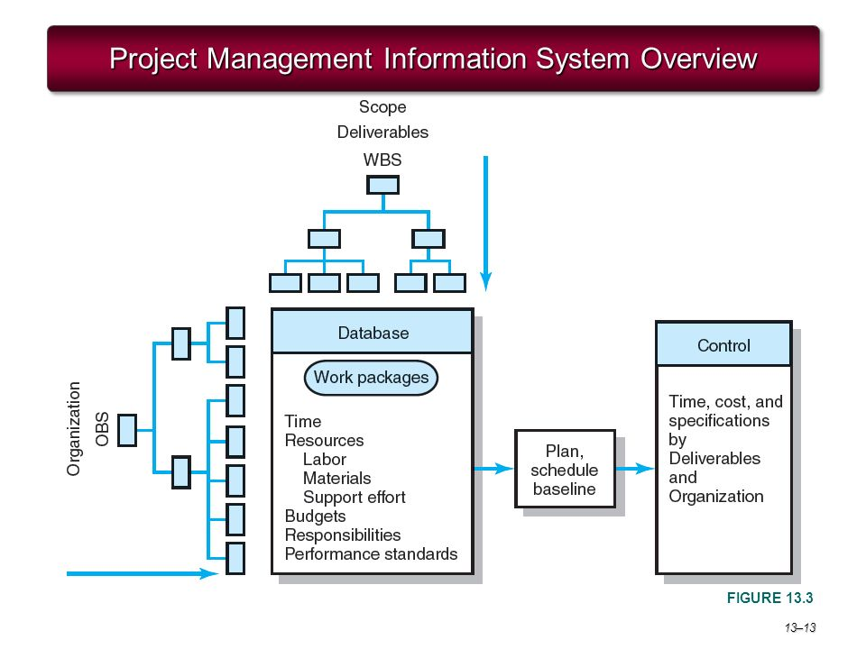 system build project management info systems