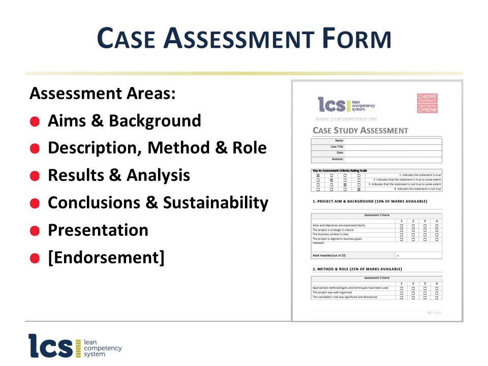 Level 3 Programme Case Study Introduction - ppt video online download