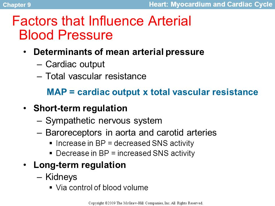Circulatory Adaptations to Exercise - ppt video online ...