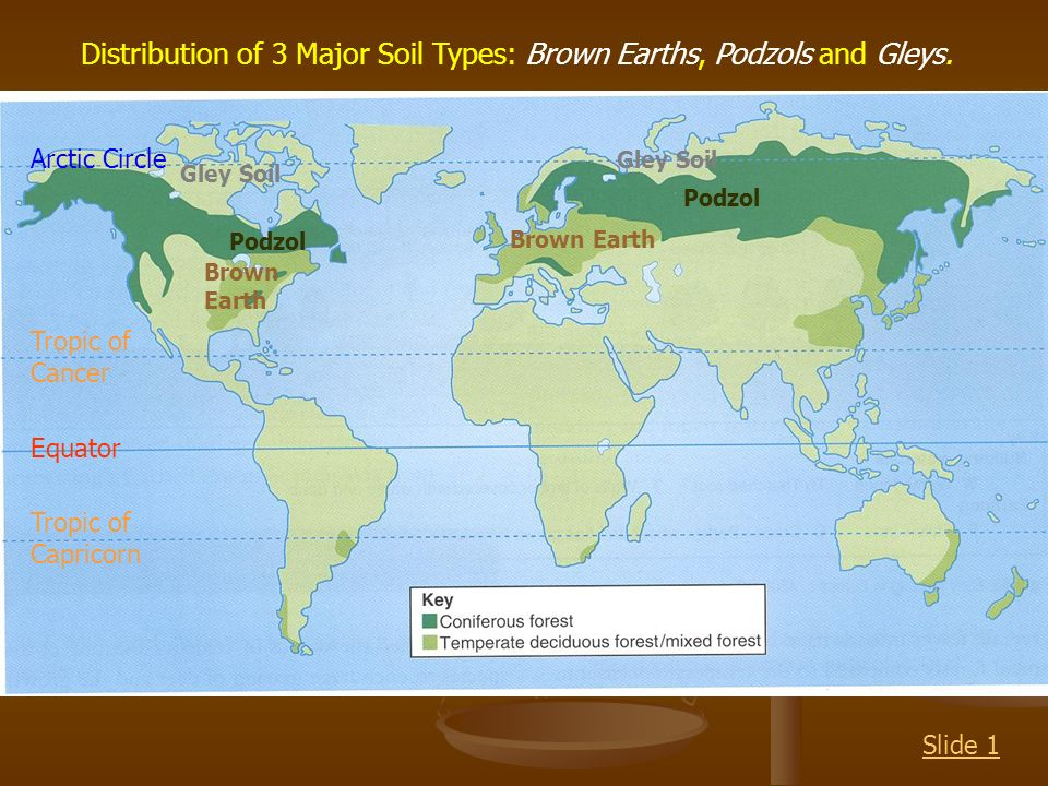 Explain the series of soils found in a soil catena ppt for Earth or soil