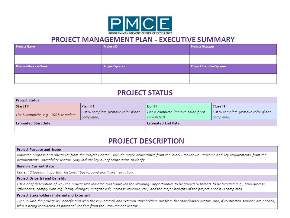 PROJECT MANAGEMENT PLAN EXECUTIVE SUMMARY ppt download – Project Management Plan