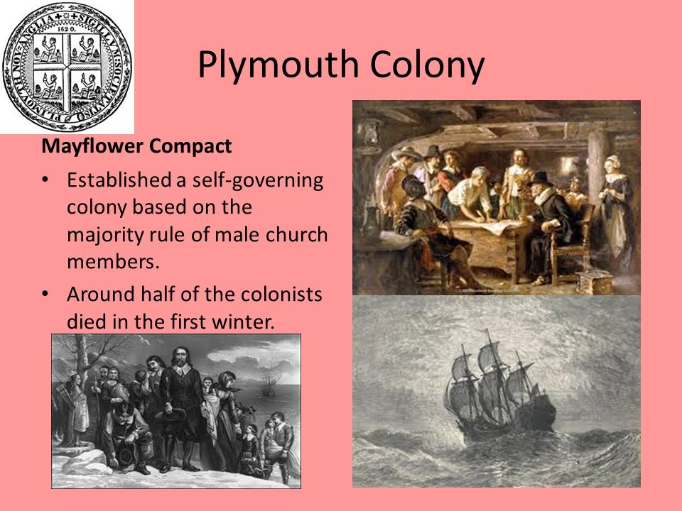 plymouth colony s mayflower compact Comparison of jamestown and plymouth 17th century settlement motivations for jamestown founding of plymouth colony founded in 1620 strength of mayflower compact william bradford and miles standish provide.