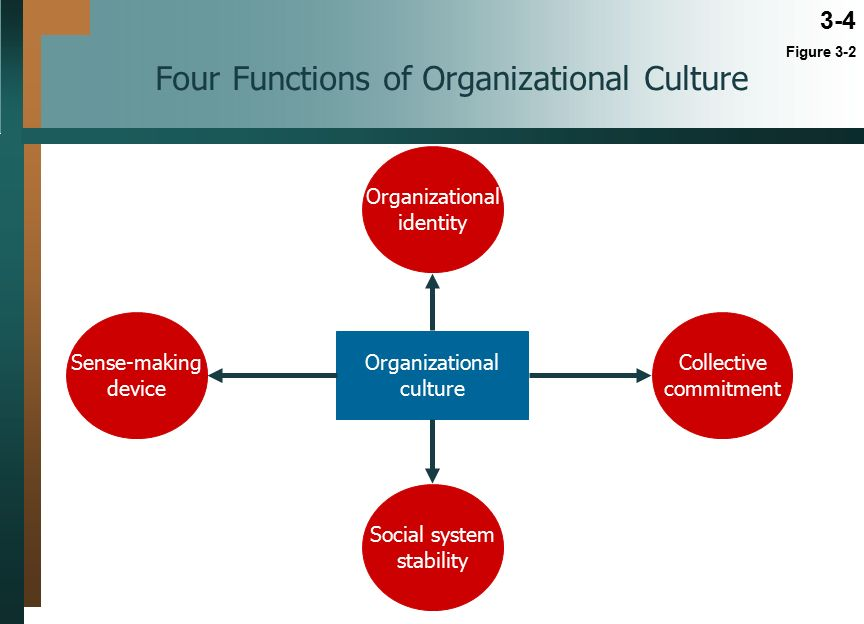 Functions of culture