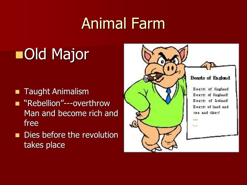 animalism in animal farm essay In addition animal farm is a satire and allegory of the russian revolution essays how is animal farm a satire and who could forget animalism vs.