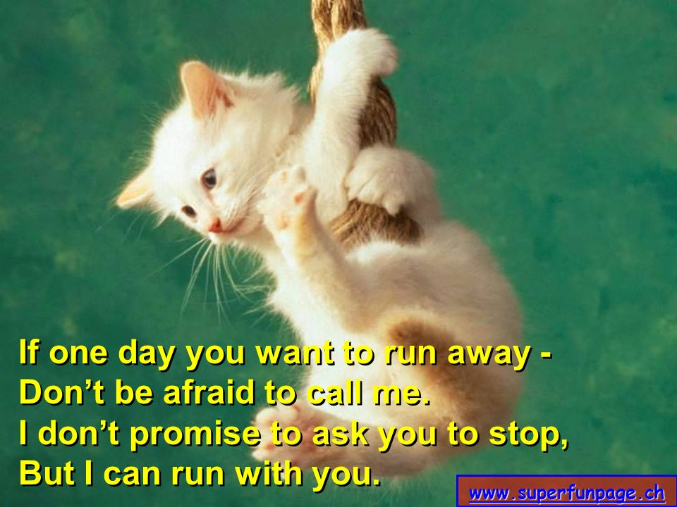 If one day you want to run away - Don't be afraid to call me.
