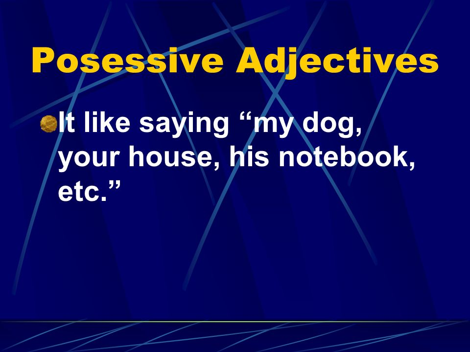 Posessive Adjectives It like saying my dog, your house, his notebook, etc.