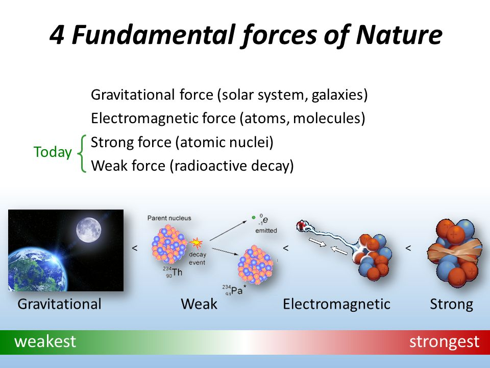 the four fundamental forces of nature Name the four fundamental forces of nature, the forces front which all others are derived - 2155636.