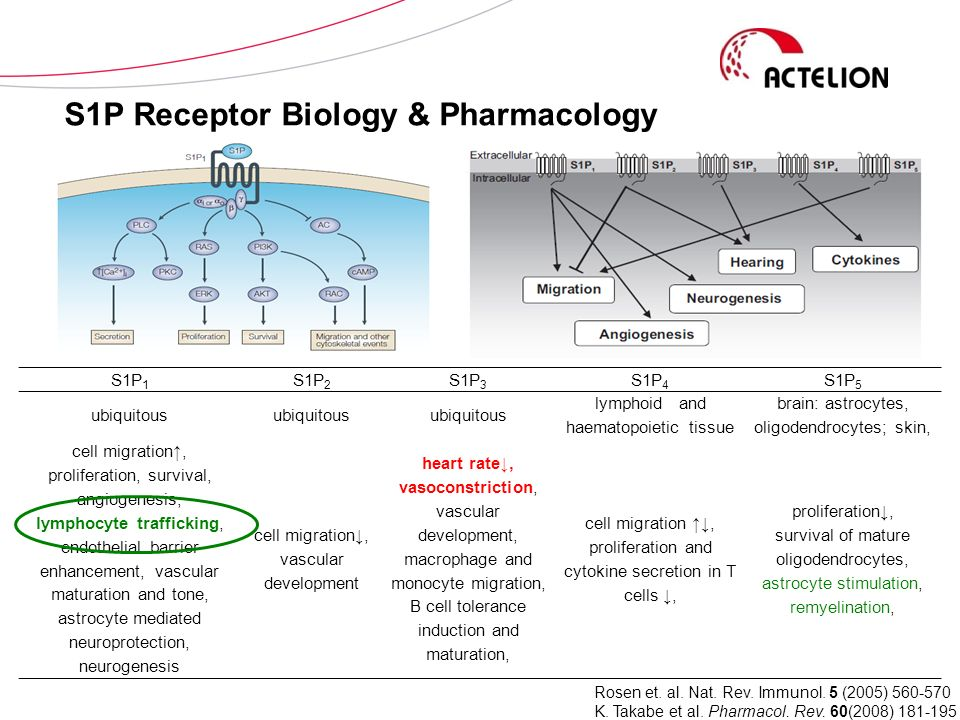 S1P Receptor Biology & Pharmacology