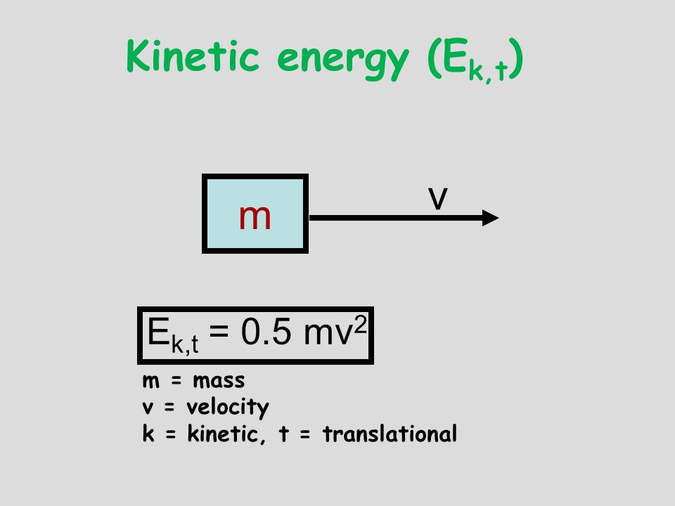 Kinetic energy (Ek,t) v m Ek,t = 0.5 mv2 m = mass v = velocity