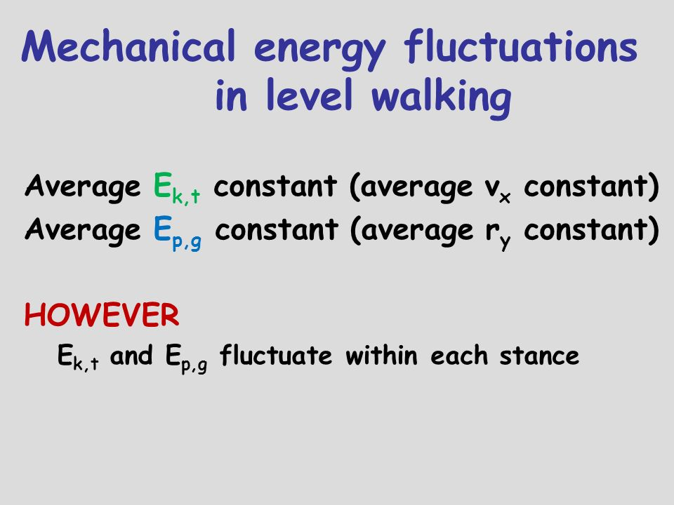 Mechanical energy fluctuations in level walking