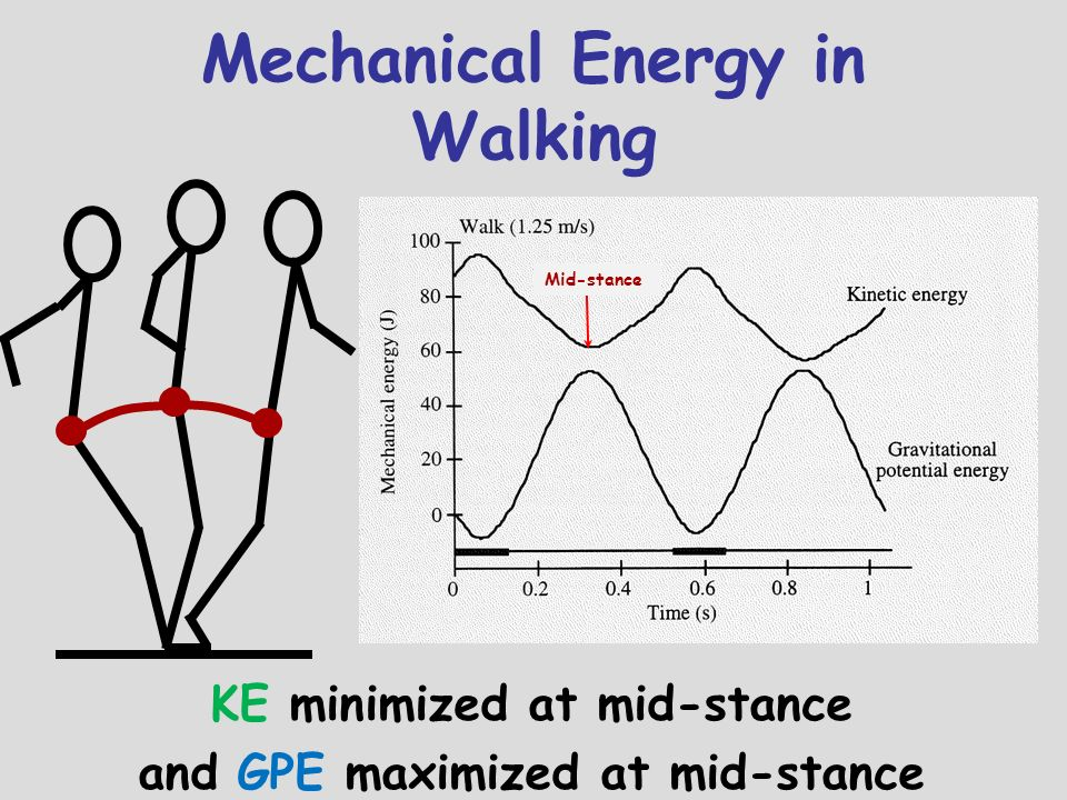Mechanical Energy in Walking