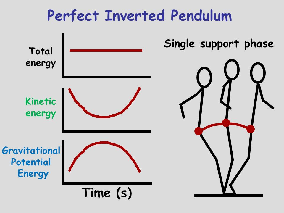 Perfect Inverted Pendulum