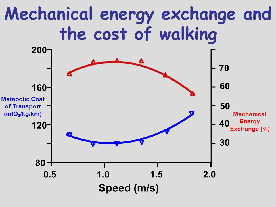 Mechanical energy exchange and the cost of walking
