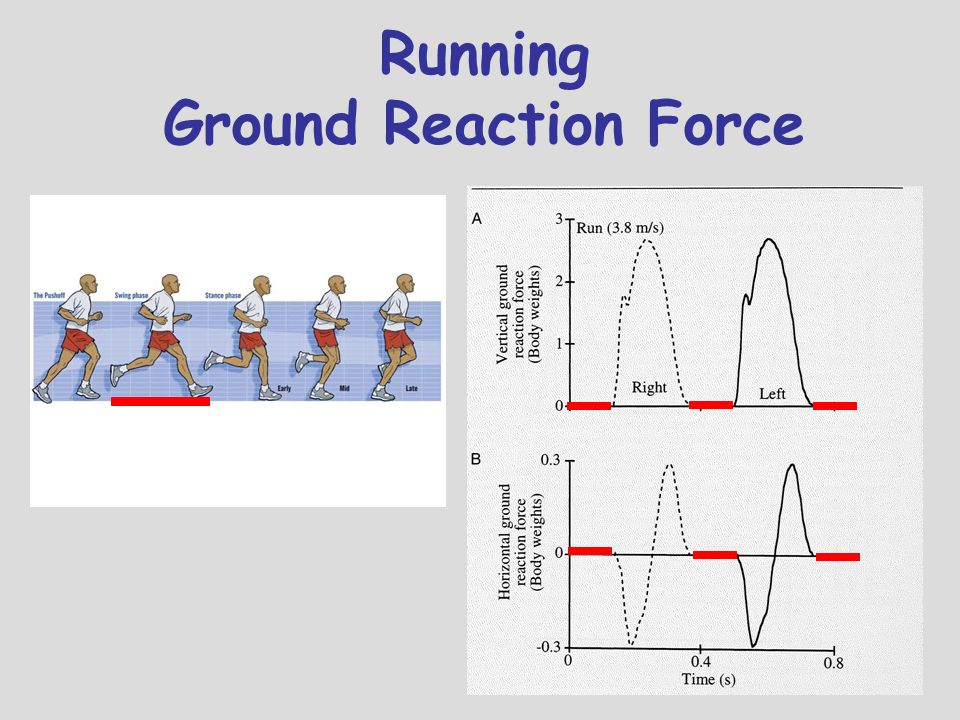 Running Ground Reaction Force