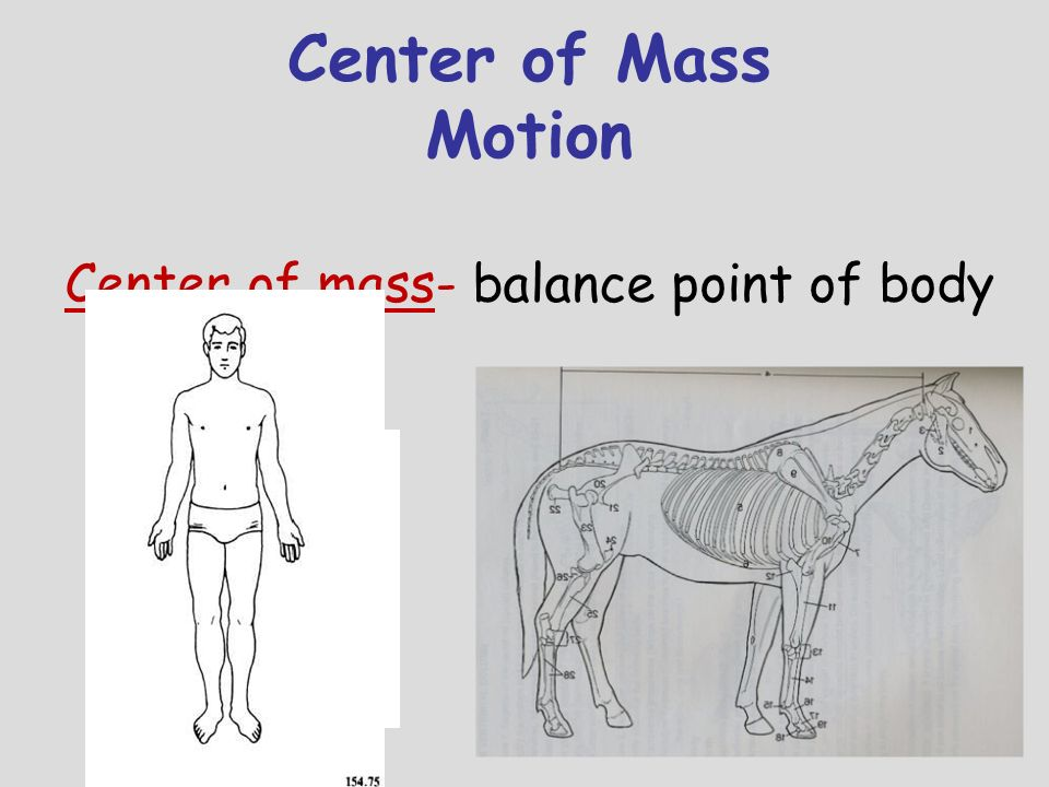 Center of Mass Motion Center of mass- balance point of body