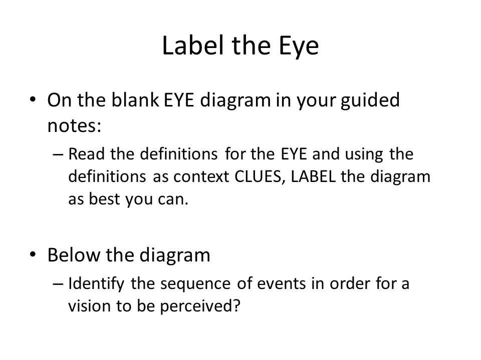 Snap Blank Diagram Of The Eye To Label Image Collections How
