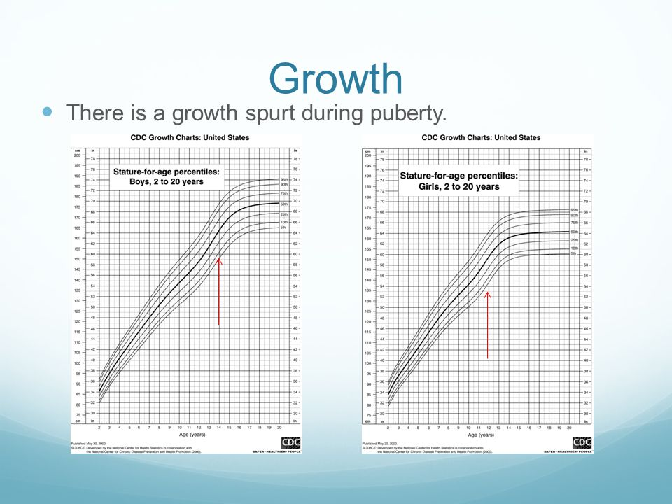 Growth There is a growth spurt during puberty.