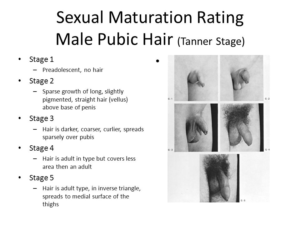 tanner sexual maturity rating