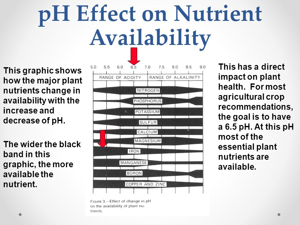 Soil nutrients if you are viewing this file with for Soil nutrients