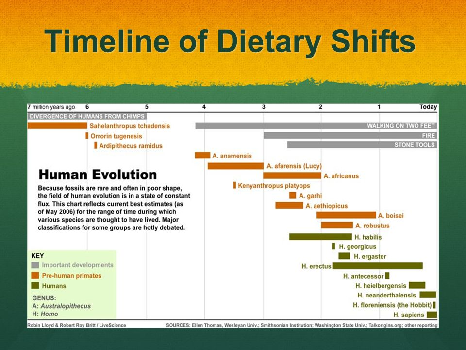 What Food Are Humans Evolved To Eat