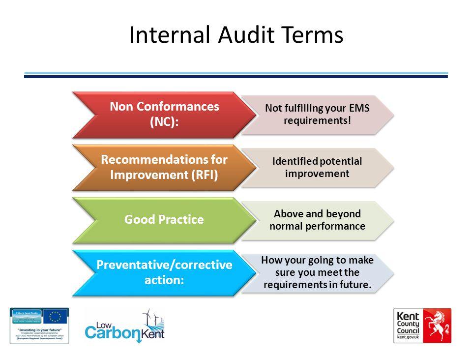 internal auditing case study