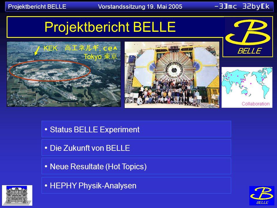 Projektbericht BELLE Status BELLE Experiment Die Zukunft von BELLE