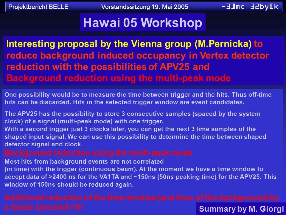Hawai 05 Workshop