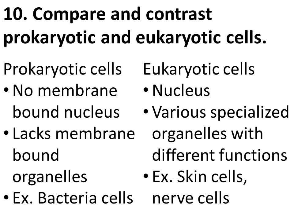 compare and contrast prokaryotic and eukaryotic cells essay Compare and contrast eukaryotic and prokaryotic cells it is thought that the mitochondria of a eukaryotic cell were originally foreign prokaryotic cells.
