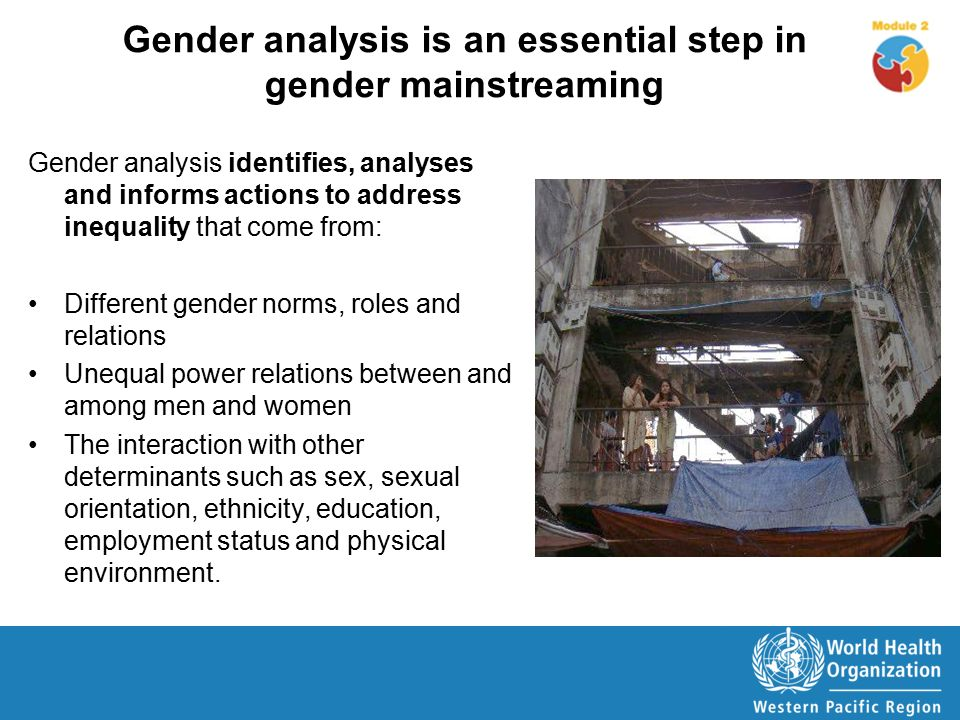 gender role analysis This new version of the guide to conducting gender-based analysis has been produced as a result of several factors, in particular the approval of the repositioning.