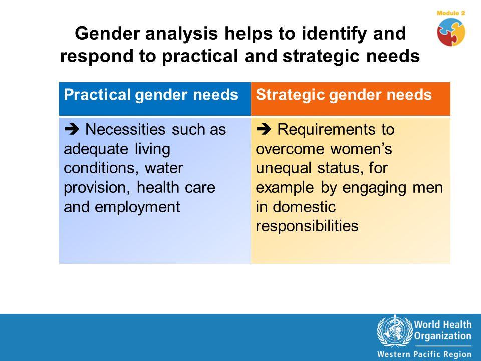 Gender Criticism Essay Gender Criticism Analysis Coursework Example  Gender Criticism Essay Gender Criticism Analysis