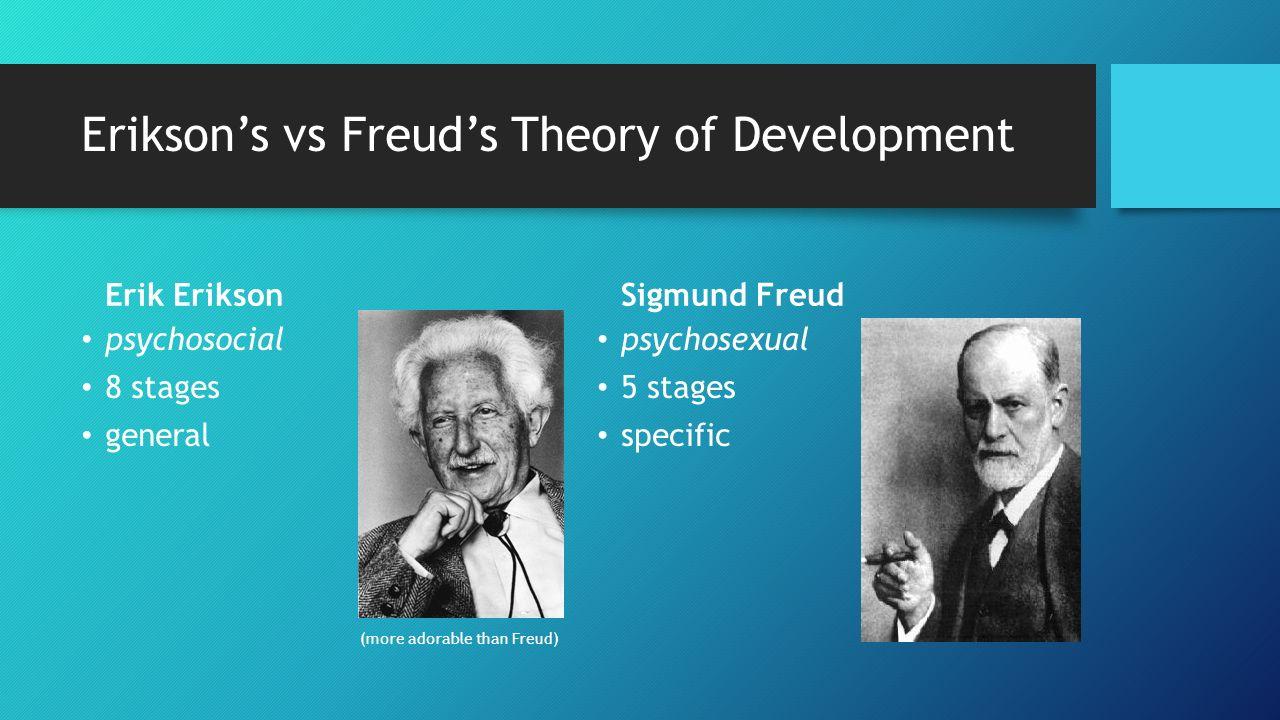 compare erik erikson and sigmund freud theories