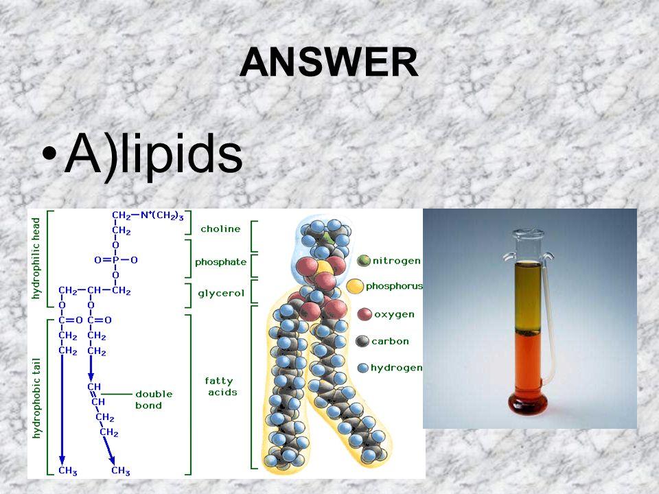 ANSWER A)lipids