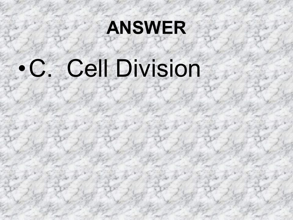 ANSWER C. Cell Division