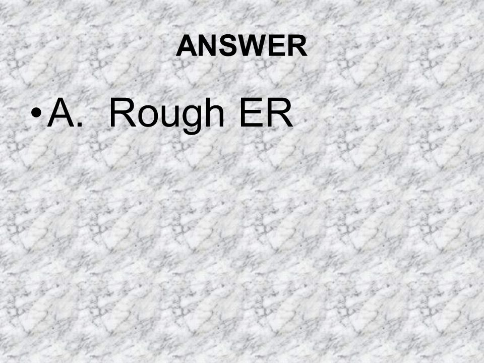 ANSWER A. Rough ER