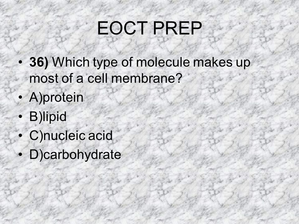 EOCT PREP 36) Which type of molecule makes up most of a cell membrane