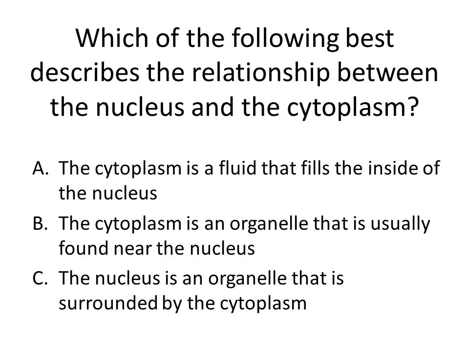 nucleus and nucleolus relationship goals