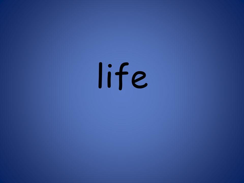 life 125