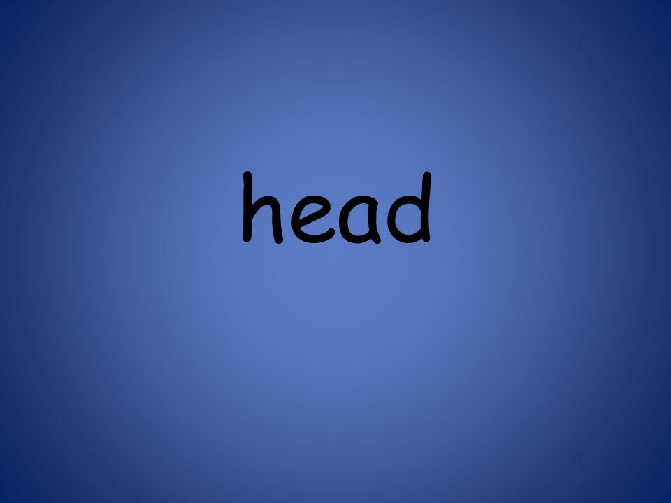 head 125