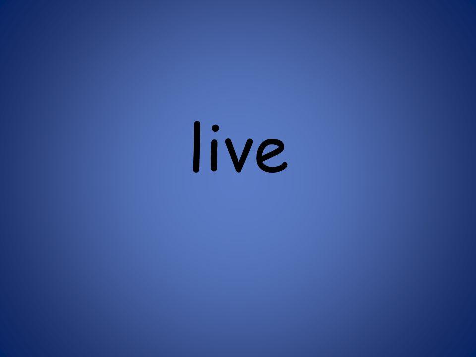 live 125