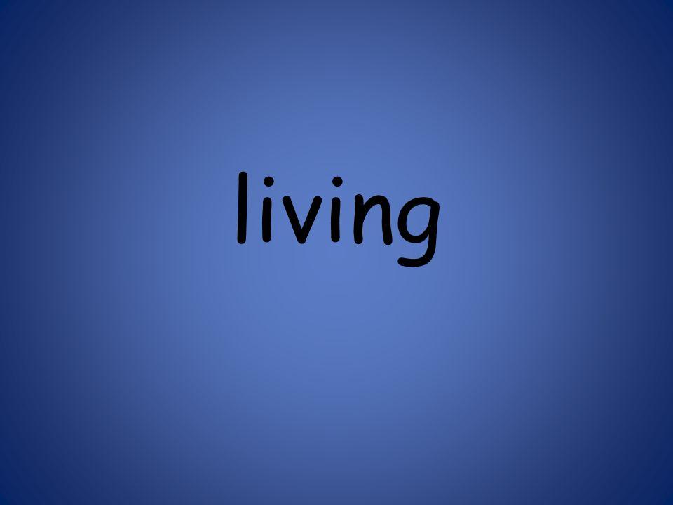 living 125